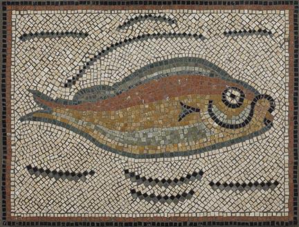 Betsy Gallery - Roman Tunisian Fish web